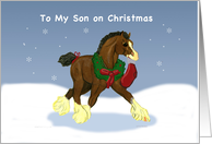 Clydesdale Cold to my Son Christmas card