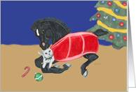 Black Foal with Cat Christmas