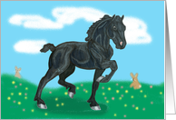 Black Friesian Horse Foal with bunnies