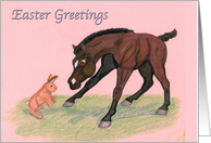 Easter Greetings Brown horse Foal and Bunny rabbit
