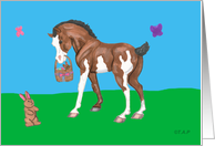 Brown and White Horse Foal with Easter Basket and Bunny