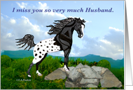 Appaloosa Horse Miss You Husband