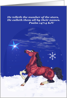 Winter Horse with Psalm
