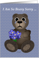 Beary Sorry Apology