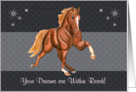 Dreams in Reach Tennessee Walking Horse