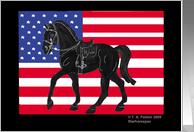 Fallen Heroes Horse USA Flag