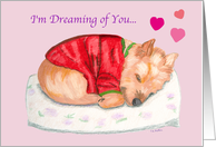 Cairn Terrier Dreaming